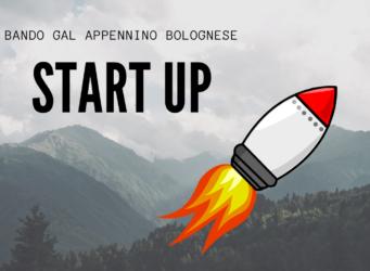 gal-start-up